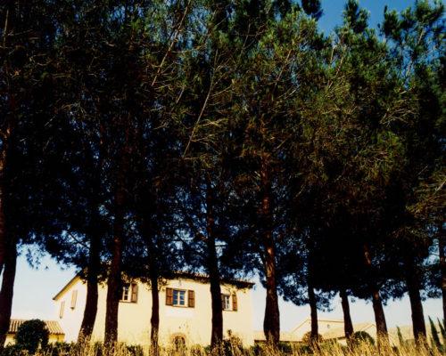 Foto Fattoria e alberi cornice