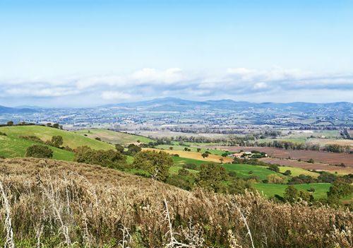 Panorama 2 - La terra